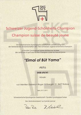 "© Akita Zucht ""of Büt Yama"" | Schweizer Jugend Champion"