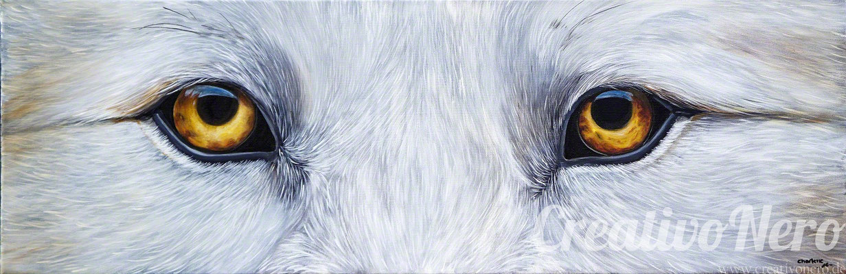 """Augen eines Wolfs, """"Eyecatcher"""", 90x30 cm, Acyl auf Leinwand"""