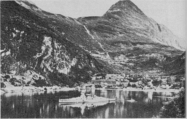 Sommer und die Schönheit der norwegischen Fjordlandschaft.