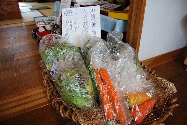 自家製野菜は店内でも(少し)販売しております