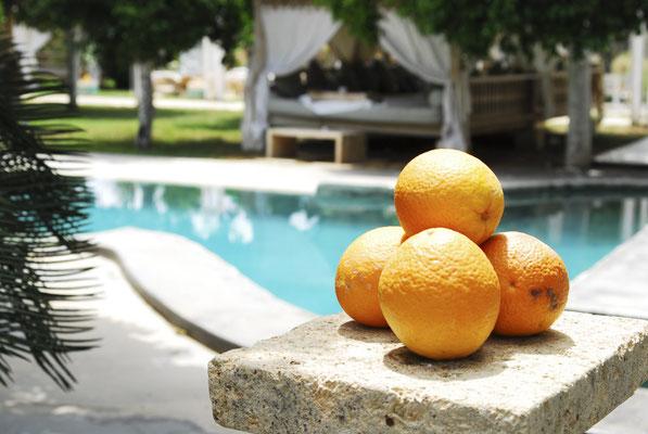 Finca photographer on Mallorca and Ibiza