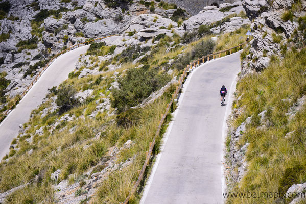 Road cycling Mallorca