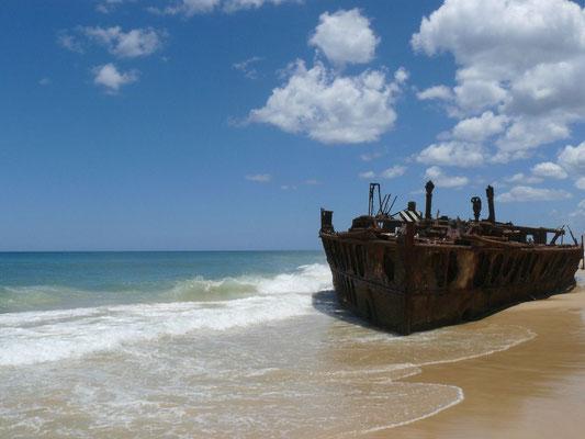 Wrack auf Fraser Island