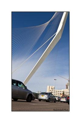 Ponte dell'Architetto Calatrava - simboleggia l'arpa di Re Davide