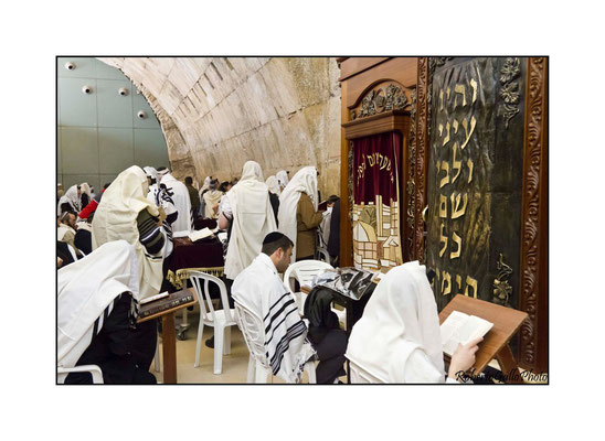 In preghiera nella Sinagoga
