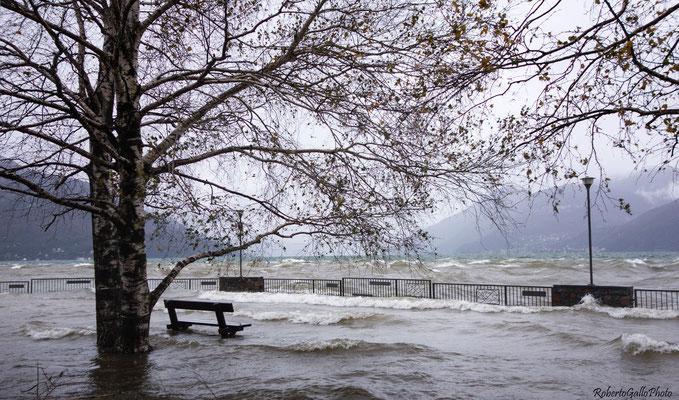 Lago Maggiore - Germignaga - esondazione del 17/11/2014
