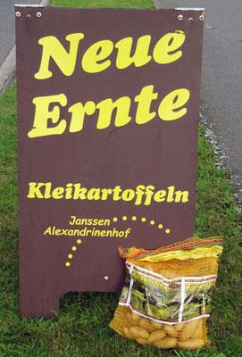 Kartoffeln vom Kleiboden... vom Alexandrinenhof Janssen