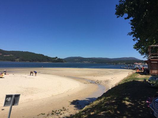 Playa Testal