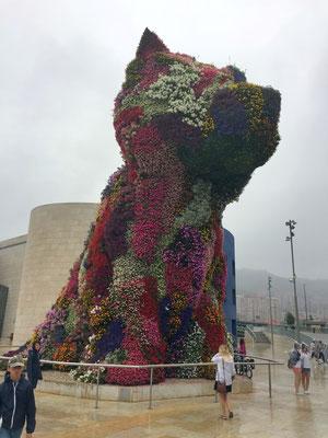 Hundewelpe vor dem Guggenheim-Museum in Bilbao, Puppy