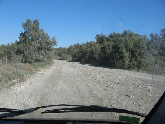 Straße von Beauduc zurück