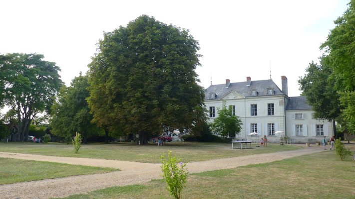 Camping Chateau d'Ingrandes