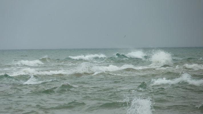 Nordsee (Skagerrak) und Kattegat