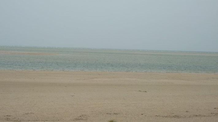 Strand von Blavand