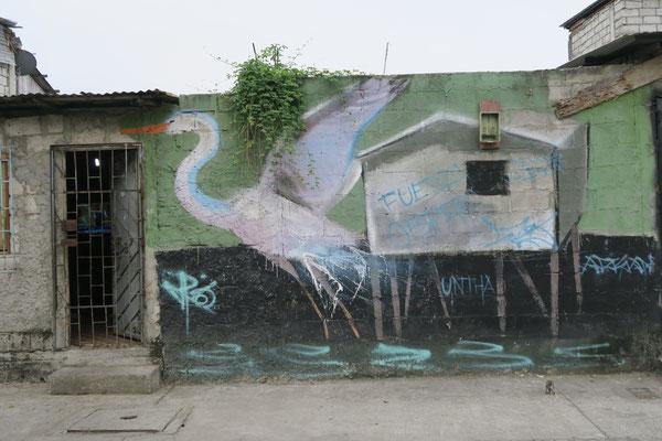 Kraniche ziehen? - Isla Trinitaria/Guayaquil