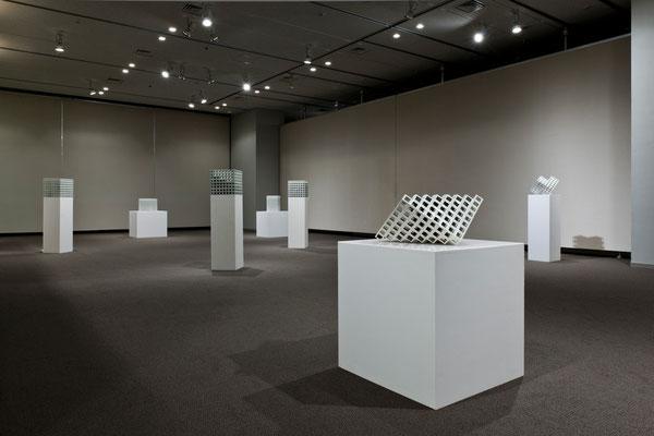 「香川県文化芸術新人賞受賞作家展」香川県立ミュージアム 2011