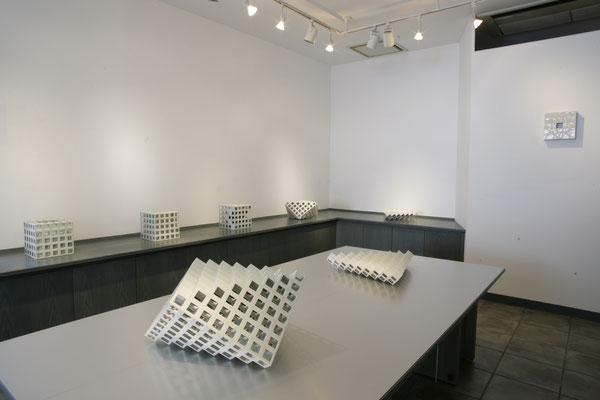 「亀井洋一郎展 光の受容器、影の受容器」SILVER SHELL 2008
