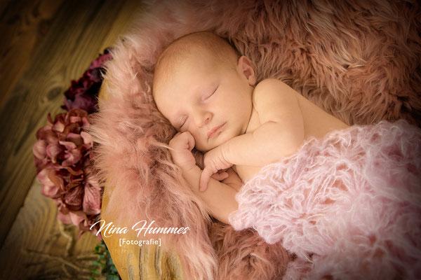 Fotograf Hürth / Neugeborenenfotografie / Babyfotografie / Studio Hürth