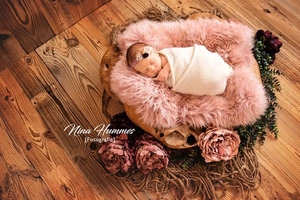 Neugeborenen Fotoshooting / Neugeborenenfotoshooting Köln / Studio Köln