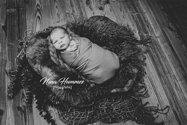 Nina Hummes Fotografie / Babyfotograf Köln / Newbornphotos / Newborn photos Köln