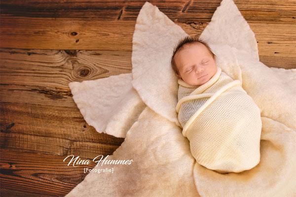 Fotograf Lindenthal / Neugeborenenfotografie / Babyfotografie / Studio Lindenthal