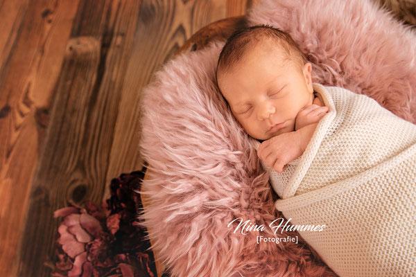 Baby Fotoshooting / Babyfotoshooting Köln / Studio Bedburg / Bergheim / Elsdorf