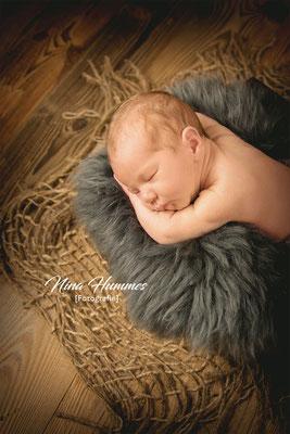Neugeborenenfotografie in Köln / Shooting / Fotoshooting nach der Geburt