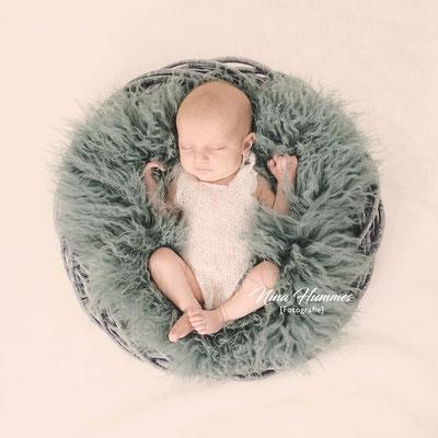 Fotograf Kerpen / Neugeborenenfotografie / Babyfotografie / Studio Kerpen