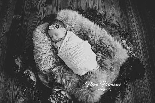 Baby Fotos / Babyfotos Köln / Studio Hürth / Brühl / Wesseling