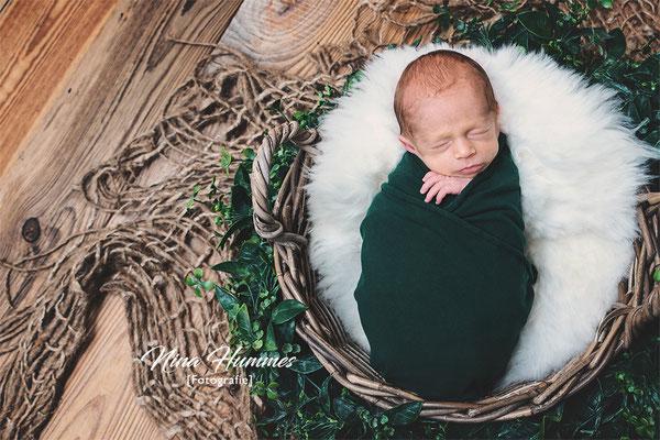 Nina Hummes Fotografie / Babyfotograf Köln / Babyfotos / Baby Fotos Köln