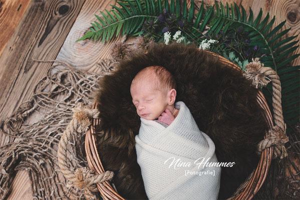 Fotograf Köln / Neugeborenenfotografie / Babyfotografie / Studio Köln