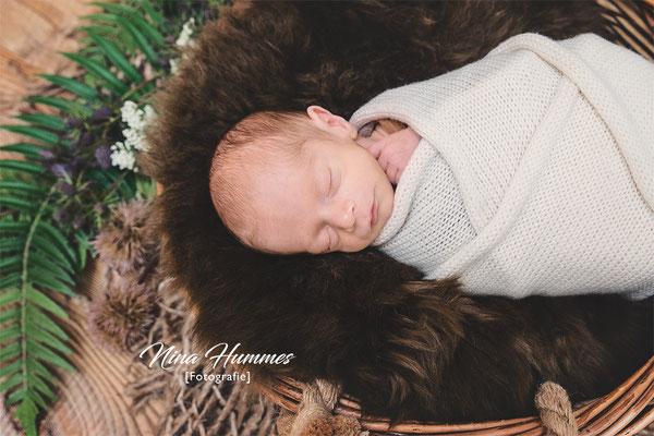 Nina Hummes Fotografie / Babyfotografie Köln / Säuglingsfotos / Säuglings Fotos Köln