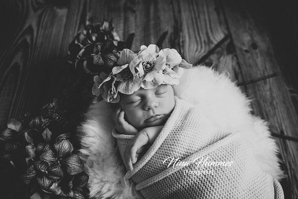 Baby Fotos / Babyfotos Köln / Studio Kerpen / Erftstadt