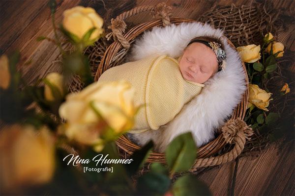 Neugeborenen Fotoshooting / Neugeborenenfotoshooting Köln / Studio Kerpen / Erftstadt