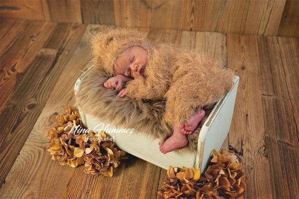 Neugeborenen Fotoshooting / Neugeborenenfotoshooting Köln / Studio Hürth / Brühl / Wesseling