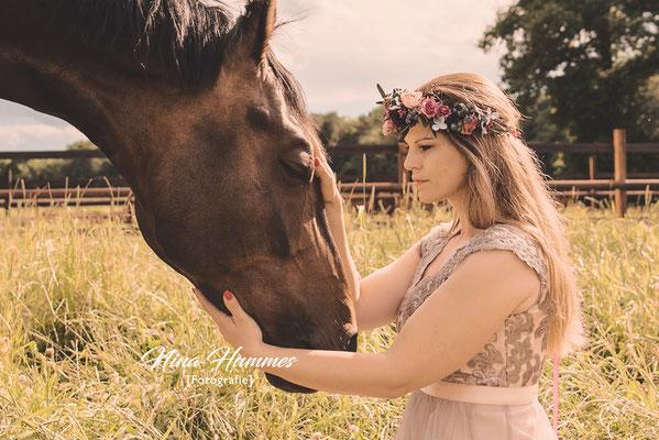 Pferde Fotoshooting / Pferdefotoshooting Köln