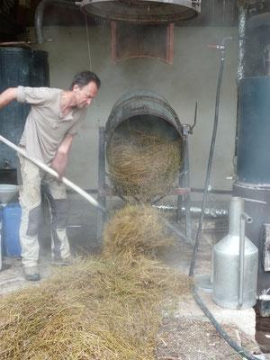 Vidage de la cuve du résidu végétal après distillation