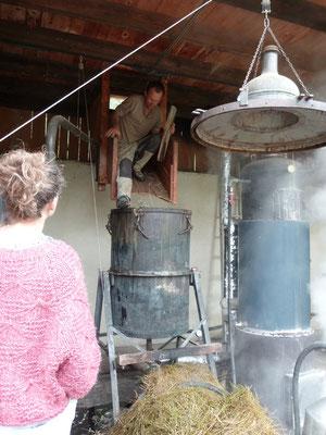 Opération de tassage, faite au pieds pour permettre une traversée lente de la vapeur