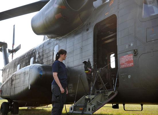 Ayka bei einer Luftübung der Bundeswehr 2012