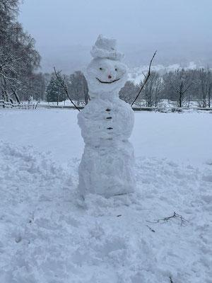 Schnee-König