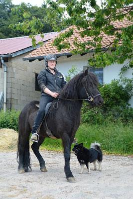 Bragi vom Hofgut Retzenhöhe (M: Blökk frá Skardi) Jahrgang 2009, verkauft