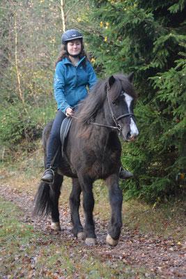 Marel vom Hofgut Retzenhöhe - leichtrittiges Familien- und Freizeitpferd -