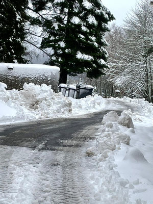 Montag morgen - nach einer schneereichen Nacht
