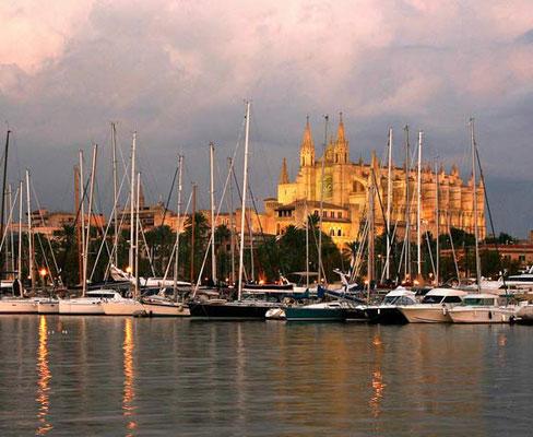 Segeltörn und Segelurlaub Palma de Mallorca Erwachsene