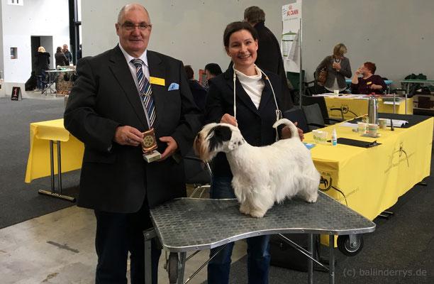 Smilla - BOB Nationale Austellung Karlsruhe 2018
