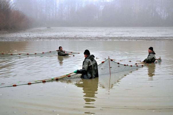 Pêche dans la Dombes 05