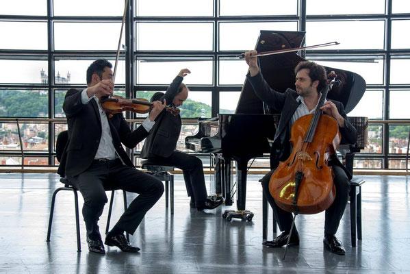 Trio Palmer 09