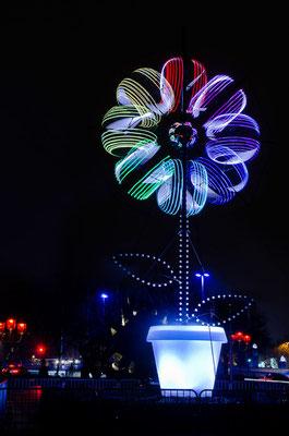 Fête des lumières 2013 - 15
