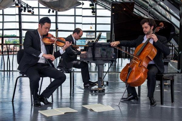 Trio Palmer 06