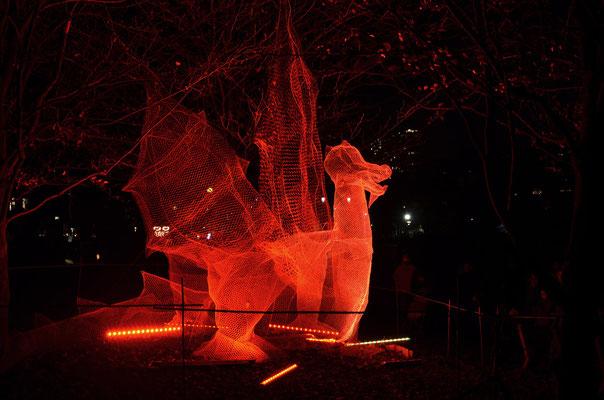 Fête des lumières 2011 - 03