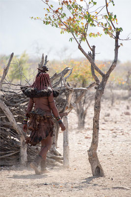 Himbas 31